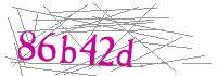 Visual Verification